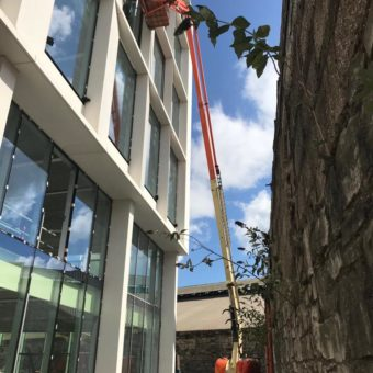 JLG SN 4631 working at height in Cork!